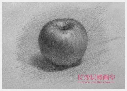 苹果素描(上图)