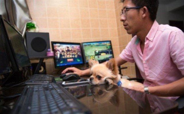 中年男游戏代练养全家 同操19台电脑 奇闻异事 第1张