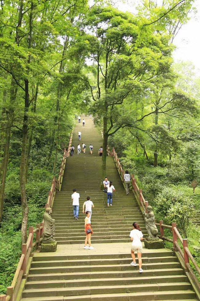 老峨山那长长的石梯和优美的风景