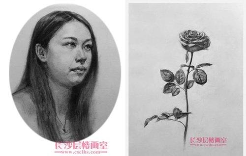 人物玫瑰素描(上图)