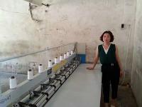 安徽蔣大姐小型彈花機換大型彈花機器。
