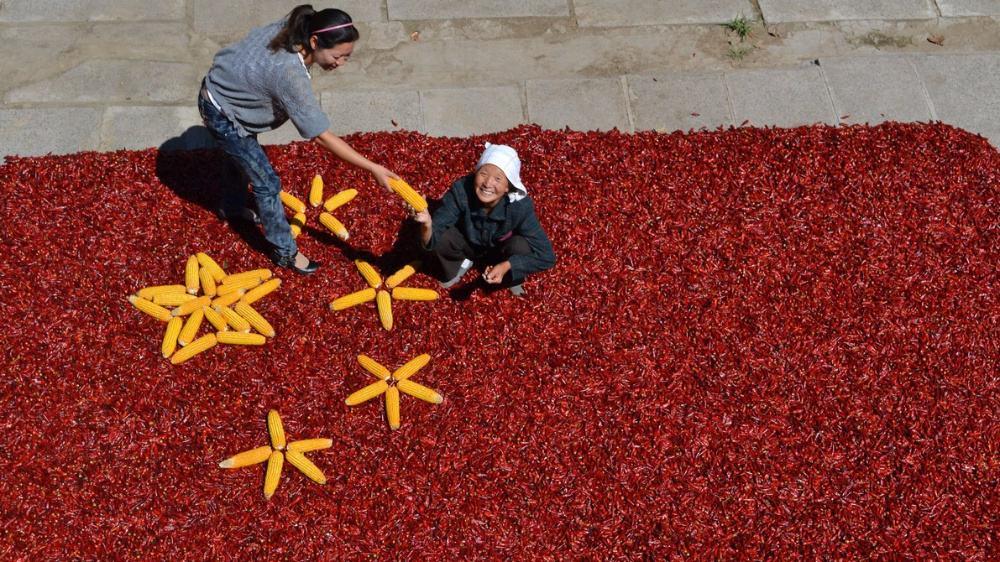 也是第一个在国家层面专门为我们农民设立的节日.